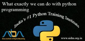 WHAT WILL HAPPEN IF YOU LEARN PYTHON?