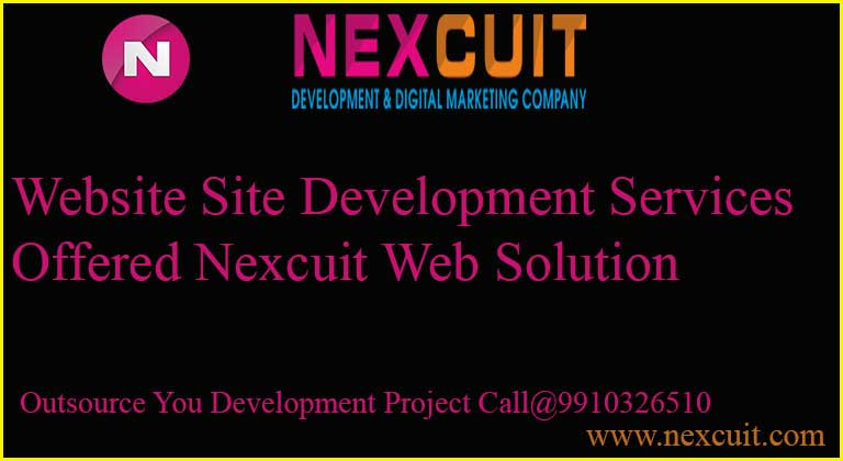 Website Site Development Services offered Nexcuit web Solution