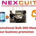 Types of promotional Bulk SMS Messages for your business promotion